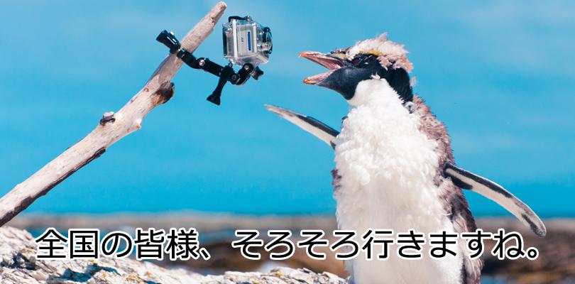 Googelペンギンアップデート3.0