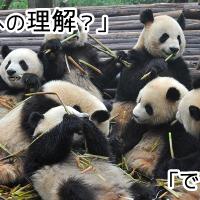 これからのパンダアップデート4.1を理解