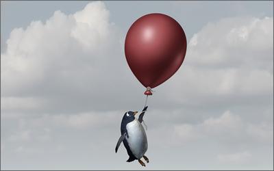 ペンギンアップデートに関して